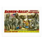 Barnum & Bailey - Elephants Postcard