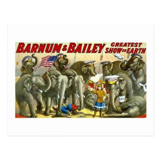 Barnum & Bailey - Elephants - Vintage Ad Postcard
