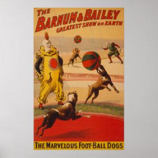 Barnum & Bailey - Marvellous Football Dogs Poster