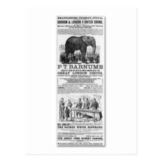 Barnum & London 9 United Shows Ad Postcard