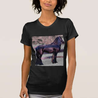 Baroque Friesian Horse Shirts