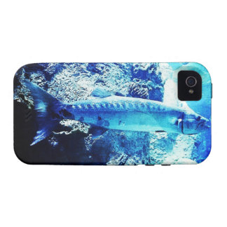 Barracuda iPhone 4/4S Covers