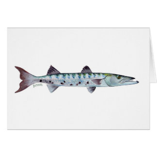 Barracuda fish greetings card