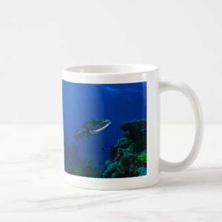 Barracuda on the Great Barrier Reef Coffee Mug