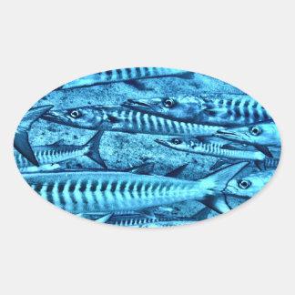 Barracuda Oval Sticker