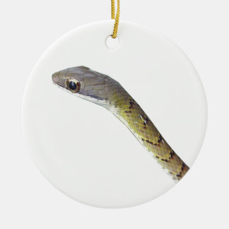 Barred Forest Racer Round Ceramic Decoration