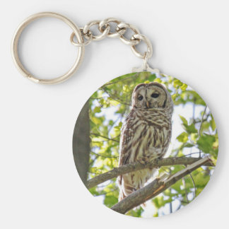 Barred Owl Basic Round Button Key Ring
