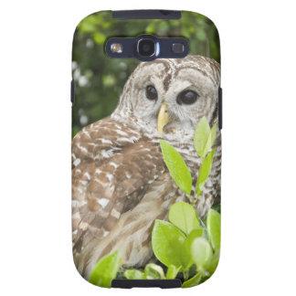 Barred Owl Galaxy SIII Cover