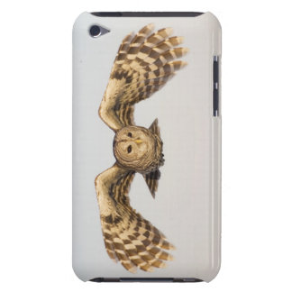 Barred Owl in Flight Barely There iPod Cases