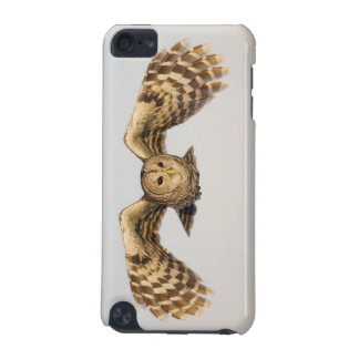 Barred Owl in Flight iPod Touch (5th Generation) Cases