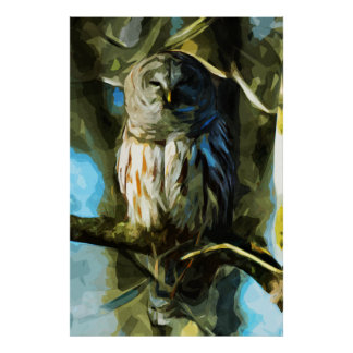 Barred Owl in Tree Abstract Impressionism Poster