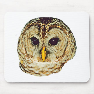 Barred Owl Mouse Mats