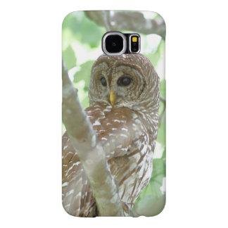 Barred Owl Samsung Galaxy S6 Samsung Galaxy S6 Cases