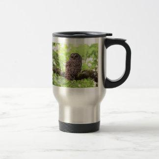 Barred Owl Stainless Steel Travel Mug