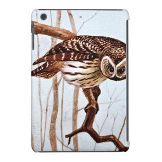 Barred Owl Vintage Wildlife Illustration iPad Mini Retina Cases