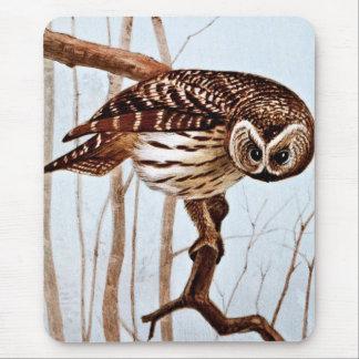 Barred Owl Vintage Wildlife Illustration Mouse Pads