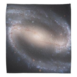 Barred Spiral Galaxy NGC 1300 Bandana