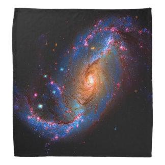 Barred Spiral Galaxy NGC 1672 Bandana