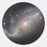 Barred Spiral Galaxy NGC 1672 Sticker