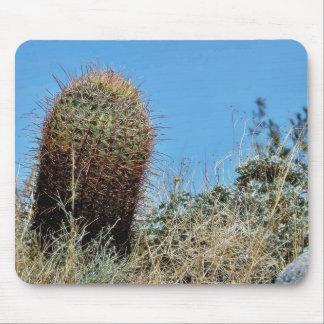 Barrel Cactus A Cactus In Anza Borrego Desert Cact Mouse Mat