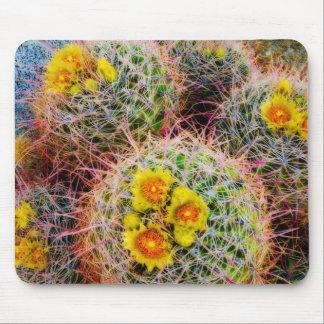 Barrel cactus close up, California Mouse Mat
