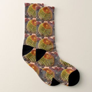 Barrel Cactus Unisex Socks