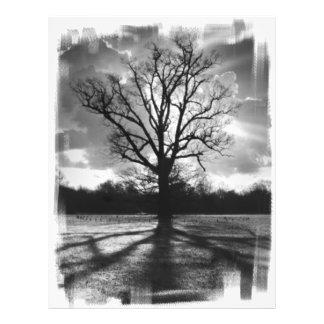 Barren Branches Tree 21.5 Cm X 28 Cm Flyer