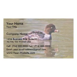 Barrow's Goldeneye hen Pack Of Standard Business Cards