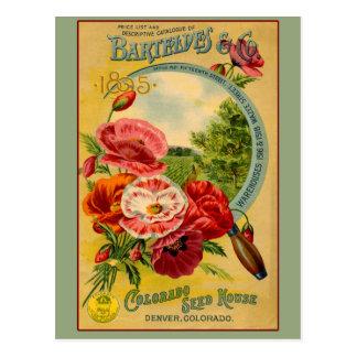 Barteldes Colorado Seed Company Art Cards Postcards