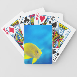 Bartlett's anthias bicycle playing cards