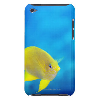 Bartlett's anthias barely there iPod cover