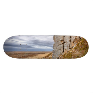 Basalt columns in Gerduberg Iceland Skate Deck