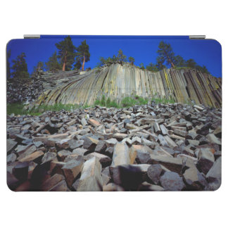 Basalt Formations of Devils Postpile iPad Air Cover