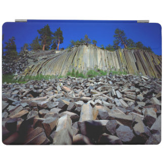 Basalt Formations of Devils Postpile iPad Cover