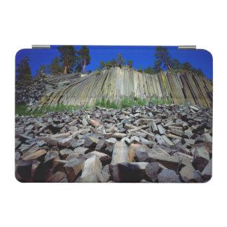Basalt Formations of Devils Postpile iPad Mini Cover