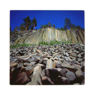 Basalt Formations of Devils Postpile Wood Coaster
