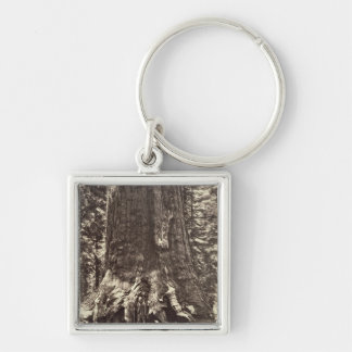 Base of the Grizzly Giant, from 'The Yosemite Book Silver-Colored Square Key Ring