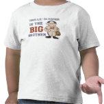 Baseball Big Brother Tee Shirt