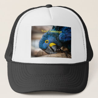 Baseball cap featuring cute Hyacinth Macaw parrot