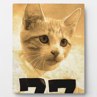 Baseball Cat (2) Plaque