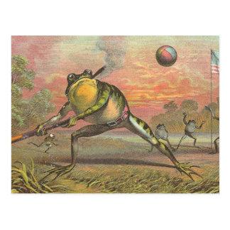 Baseball Frog Postcard