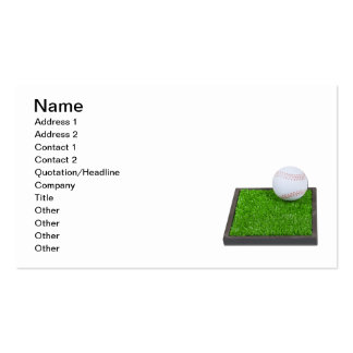 Baseball on the Grass Double-Sided Standard Business Cards (Pack Of 100)