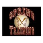 Baseball Spring Training Postcard
