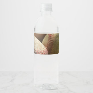 Baseballs and Glove Water Bottle Label