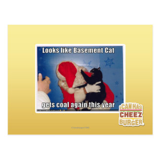 Basement Cat gets coal Postcard