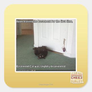 Basement Cat, slightly disoriented Square Sticker