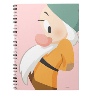 Bashful 2 notebooks