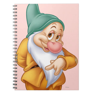Bashful 3 notebook