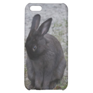 Bashful Bunny Rabbit iPhone 5C Covers