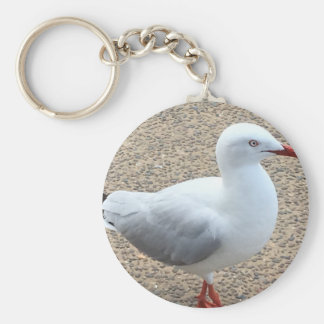 Basic Button key Chain Seagull.